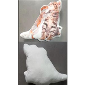 Cojín diseño Gato y Ardilla de 31x36cm
