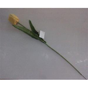 Vara de tulipán  amarillo