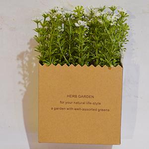 Maceta diseño bolsa de papel con pasto y flores blancas