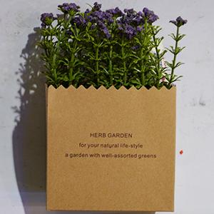 Maceta diseño bolsa de papel con pasto y flores moradas
