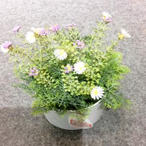 Maceta de plástico con follaje y flores