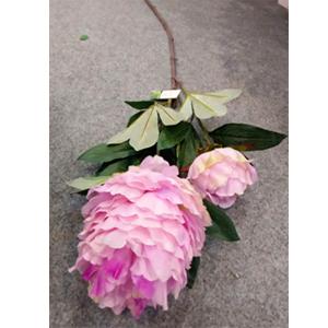 Flor morada con hojas