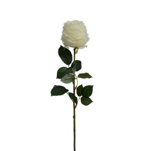 Vara de flor blanca