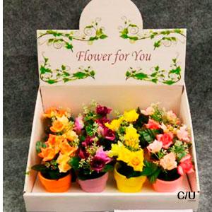Maceta con rosas de diferentes colores de 13cm