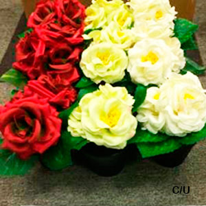 Maceta con Rosa en diferentes colores de 18cm