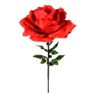 Vara de Rosa roja gigante  de 75x170cm