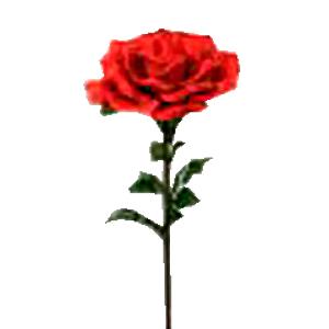 Vara de Rosa roja gigante  de 37x116cm