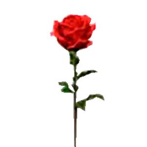 Vara de Rosa roja gigante  de 28x108cm