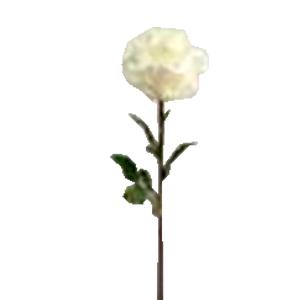 Vara de Rosa blanca gigante  de 28x108cm