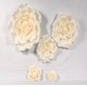 Vara de Rosa Blanca gigante de 80x170cm