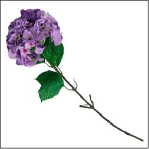 Vara de Hortensia color morado