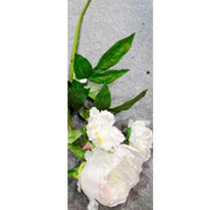 Vara de flor blanca con hojas
