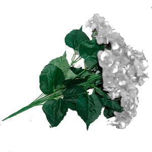 Ramo de Hortencias blancas 57x38cm