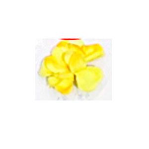 Ramo de flores manzana de cangrejo amarilla de 105cm