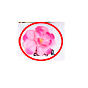 Ramo de flores manzana de cangrejo rosa de 105cm