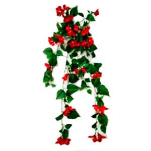 Ramo de flor de buganbilia roja