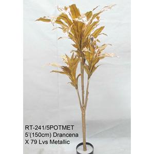 Planta Drancena de hojas doradas en maceta de 150cm