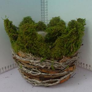 Canasta redonda de corteza con musgo de 18x18x17cm