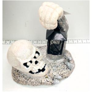 Cráneo con linterna en mano de 30x24x30cm