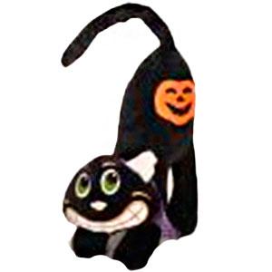 Gato negro de patita