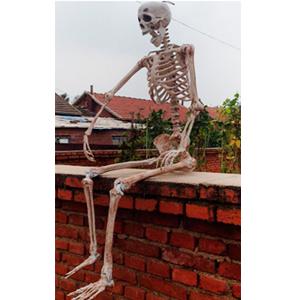 Decoración de esqueleto de 158x38x16cm