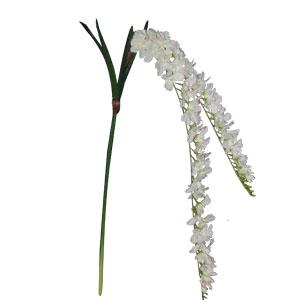 Vara  de orquidias blanca