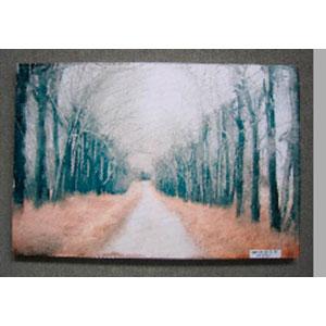 Cuadro estampado Caminos y hojas de 60x90x2.5cm