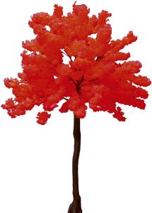 Arbol de flor de durazno rojo de 2.70m