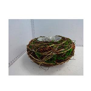 Maceta de varas c/musgo verde y piñas de 18x18x9cm