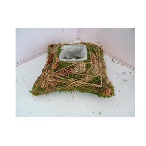 Maceta cuadrada de raíz con musgo verde de 20x20x6cm