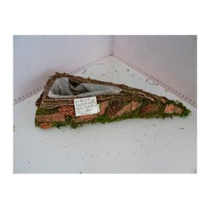 Maceta de raíz con musgo verde de 35x14x6cm