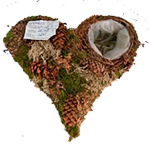 Maceta diseño corazón de raíz con musgo de 20x20x6cm