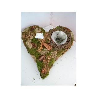 Maceta diseño corazón de raíz con musgo de 30x30x8cm