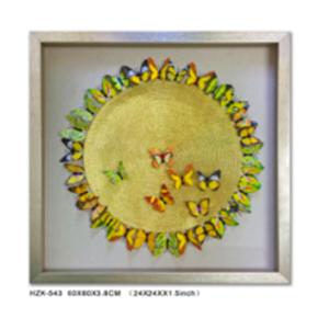 Cuadro diseño Circulo con Mariposas de colores de 60x60x3.8cm