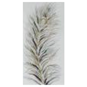 Cuadro diseño Pluma de ave con diamantina blanca de 40x80x3cm