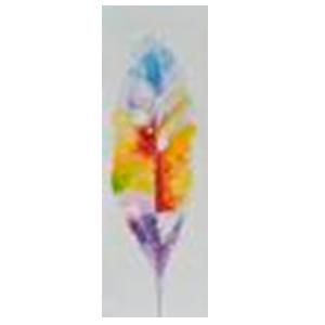 Cuadro diseño Pluma de ave a colores de 60x120x3cm