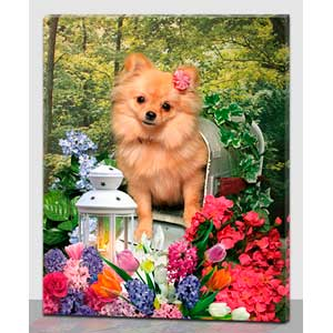 Cuadro con estampado perro en buzon y flores con luz led de 40x50x1.8cm
