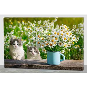Cuadro estampado gatos y flores con luz led de 60x40x1.8cm
