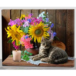 Cuadro estampado gato con flores y luz led de 60x40x1.8cm