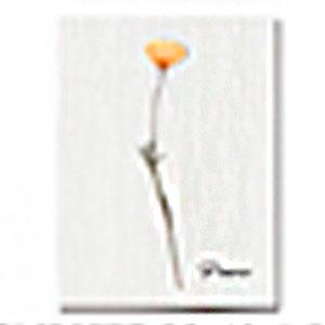 Cuadro con diseño Vara con Flor de 30x40x1.5cm
