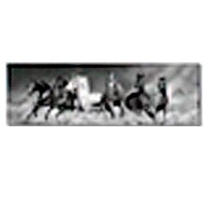 Cuadro diseño Caballos a Blanco y negro de 45x140x1.8cm