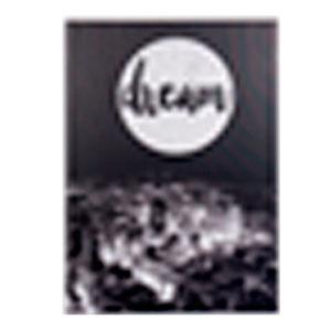 Cuadro diseño paisaje de Paris a Blanco y negro con letras de (Dream) de 50x70x1.8cm