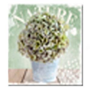Cuadro diseño Maceta blanca Con Flores verdes de 40x40x1.5cm