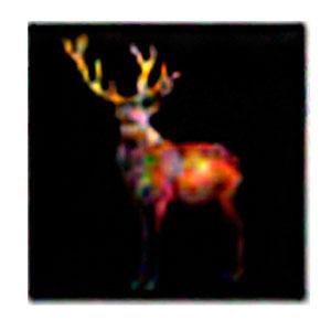 Cuadro diseño pintura de Venado de 100x100x1.8cm