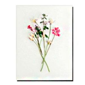 Cuadro diseño varas de flores de 30x40x1.5cm