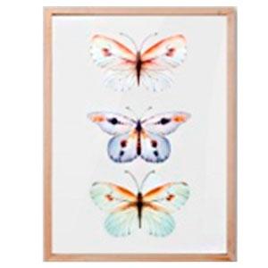 Cuadro diseño Mariposas de colores de 30x40x2cm