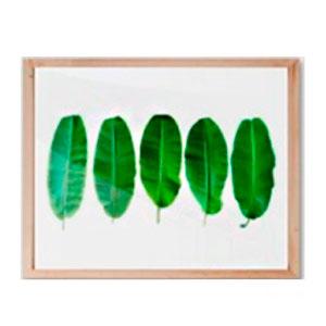Cuadro diseño Hojas Verdes de 40x48x2cm