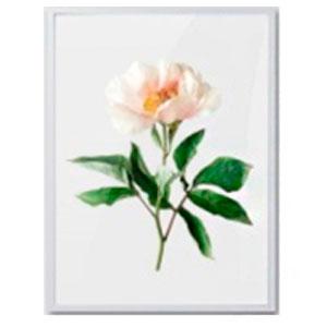 Cuadro c/marco de madera y pantalla de acrilico diseño Vara de Flor blanca de 30x40x2.5cm