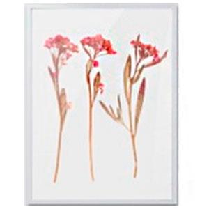 Cuadro c/marco de madera y pantalla de acrilico diseño Varas de flores rosas de 30x40x2.5cm