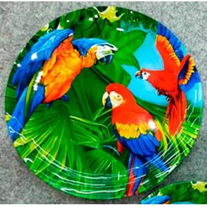 Plato de cristal diseño guacamayas de colores de 30x30x2.2cm